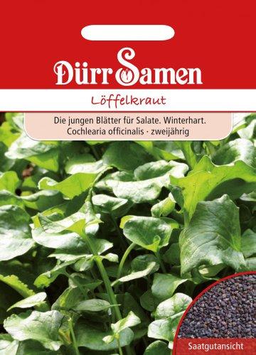 Dürr Samen 0197 Löffelkraut (Löffelkrautsamen)